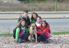 La Manada en la Protectora de Animales