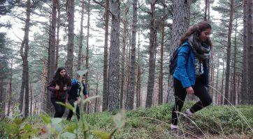 Primera acampada esculta 2016. Alarcia
